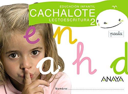 9788466765534: Lectoescritura 2. Pauta: Ed.Infantil. T.Autonomias. Campaña 2008