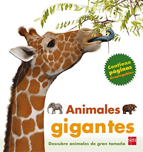 9788467553192: Animales gigantes