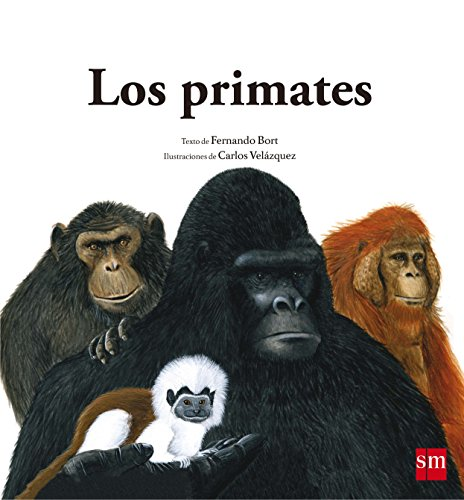 Los primates: Bort Misol, Fernando