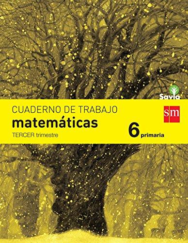 9788467578591: Cuaderno de matemáticas. 6 Primaria, 3 Trimestre. Savia - 9788467578591