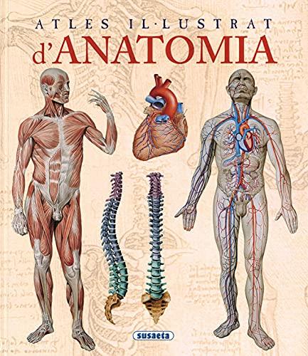9788467702101: Anatomia, Atles Il.Lustrat