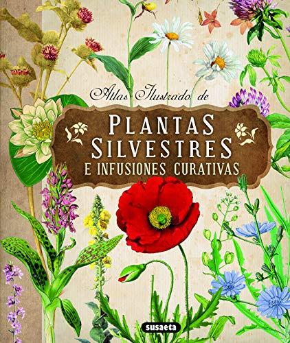 9788467722864: Atlas ilustrado de plantas silvestres e infusiones curativas / Illustrated Atlas of Wild Plants and Healing Infusions