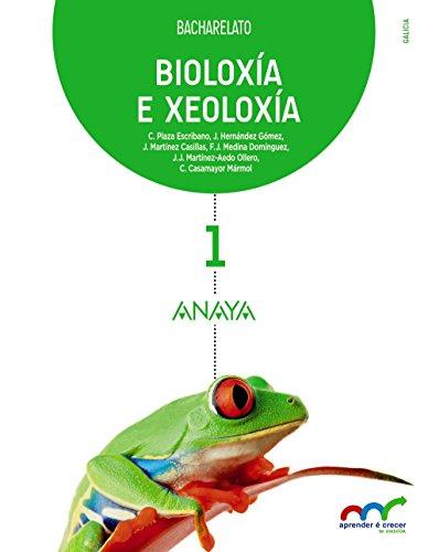 BIOLOXÍA E XEOLOXÍA 1.: PLAZA ESCRIBANO, CONCEPCIÓN