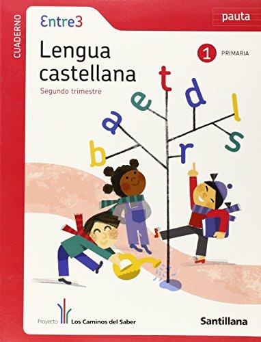 9788468001029: globalizado entre3 cuaderno lengua pauta 1 primaria 2 trim los caminos del saber