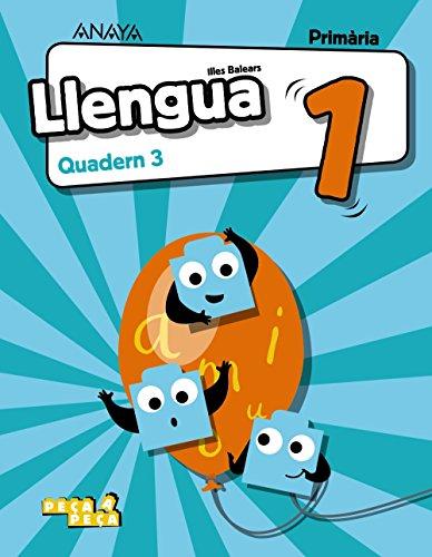 9788469837627: Llengua 1. Quadern 3.