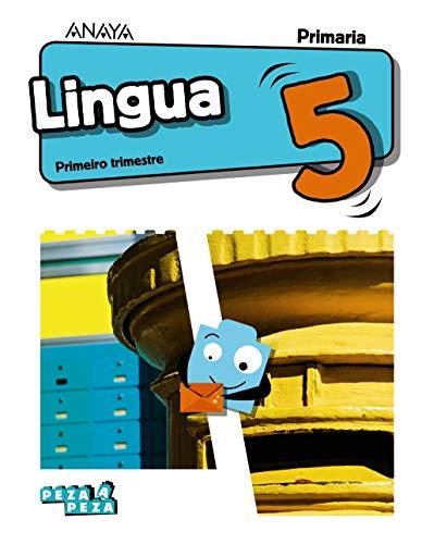 9788469866993: Lingua 5.