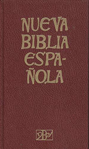 9788470571824: Nueva biblia española
