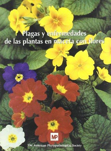 9788471149503: Plagas y enfermedades de las plantas en maceta con flores