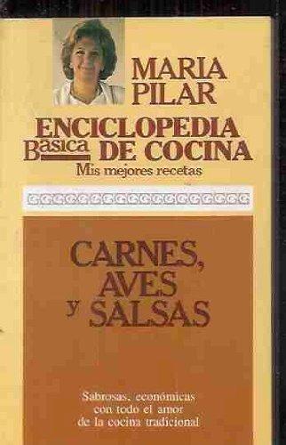 Enciclopedia basica de cocina. Mis mejores recetas. Carnes, aves y salsas: pilar-maria