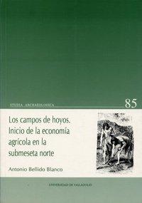 9788477626756: Los campos de hoyos: Inicios de la economía agrícola en la submeseta norte (Serie Studia archaelogica) (Spanish Edition)