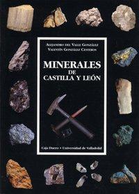 9788477628439: MINERALES DE CASTILLA Y LEON