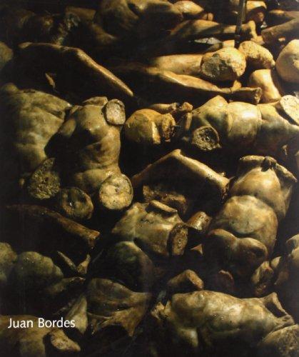 JUAN BORDES. CORPUS MEUM IN ANIMA TUA: CASTRO FLOREZ, F.,