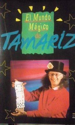 9788478381968: EL MUNDO MÁGICO DE TAMARIZ (Madrid, 1991)