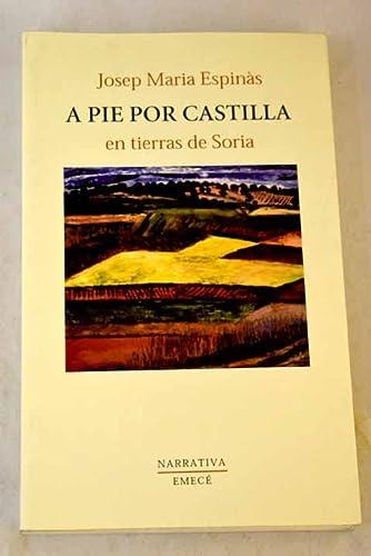 9788478884995: A pie por Castilla