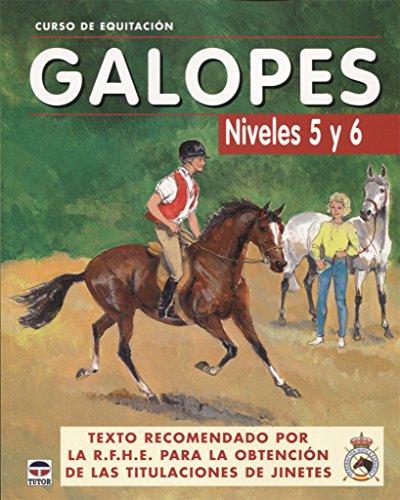 9788479025625: CURSO DE EQUITACIÓN. GALOPES NIVELES 5 Y 6 (Curso De Equitacion)
