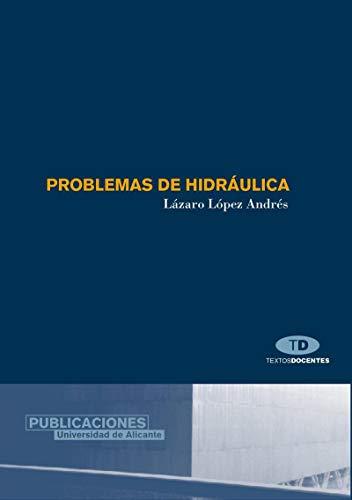 9788479086473: Problemas de hidráulica (Textos docentes)
