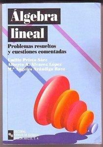 ALGEBRA LINEAL, PROBLEMAS RESUELTOS Y CUESTIONES COMENTADAS: RAEZ, ALBERTO AUGUSTO