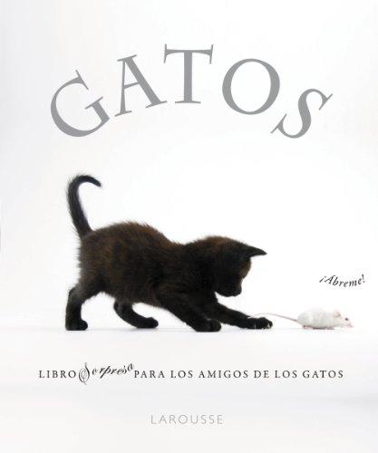 9788480169349: Gatos