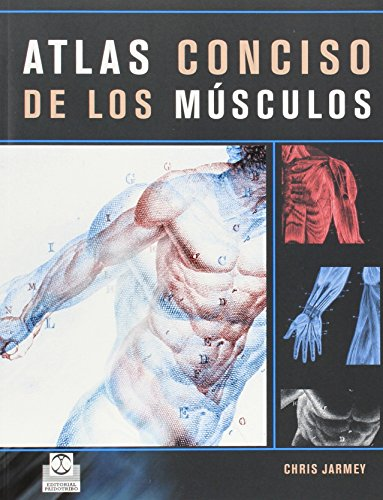 Atlas conciso de los musculos (Spanish Edition): Chris Jarmey