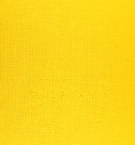 9788480263122: Wolfgang laib : sin principio, sinfin (cat.exposicion)