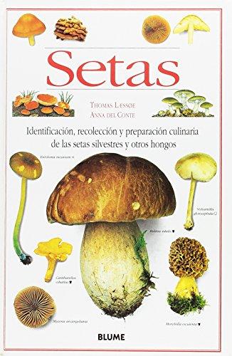 9788480762588: Setas
