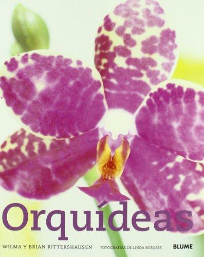 9788480766081: Orquídeas