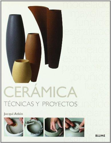 9788480766517: Técnicas y Proyectos. Cerámica
