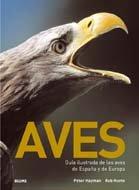 9788480767811: Aves: Guia Ilustrada de las Aves de Espana y de Europa