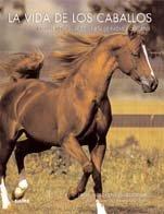 9788480768214: La vida de los caballos