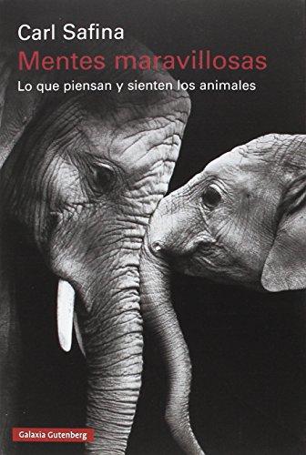 9788481095746: Mentes maravillosas: Lo que piensan y sienten los animales (Rústica Ensayo)