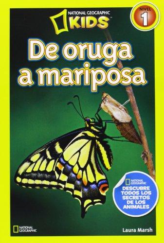 9788482985619: De oruga a mariposa, nivel 1