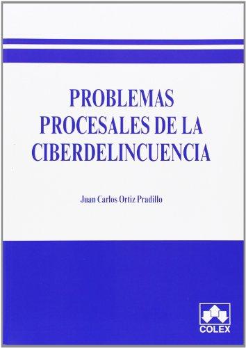 9788483423950: Problemas procesales de la ciberdelincuencia