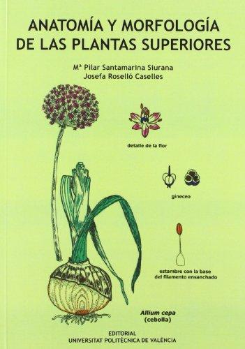 9788483637906: ANATOMÍA Y MORFOLOGÍA DE LAS PLANTAS SUPERIORES (Académica)