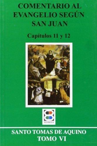9788484076360: Comentario al evangelio según san Juan: Tomo VI (CRITICA Y COMENTARIOS)