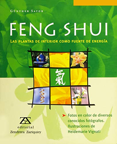 9788484181330: Feng Shui (Spanish Edition)