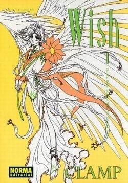 9788484317449: Wish 1 (castellano)