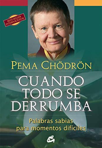 9788484454298: Cuando todo se derrumba (Spanish Edition)