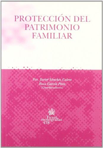 9788484567622: PROTECCION DEL DERECHO FAMILIAR