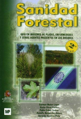 9788484763024: SANIDAD FORESTAL. GUÍA EN IMAGENES DE PLAGAS, ENFE (Patología Vegetal) (Spanish Edition)