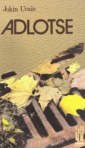 9788486597641: Adlotse (Amaiur)