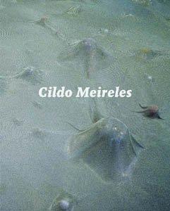 9788489771734: CILDO MEIRELES