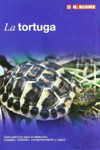 9788489840881: La tortuga (Mascotas)