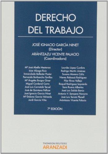 9788490142387: DERECHO DEL TRABAJO (7ª ED.)
