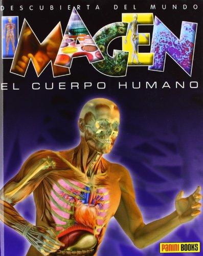 9788490241141: EL CUERPO HUMANO ( IMAGEN)