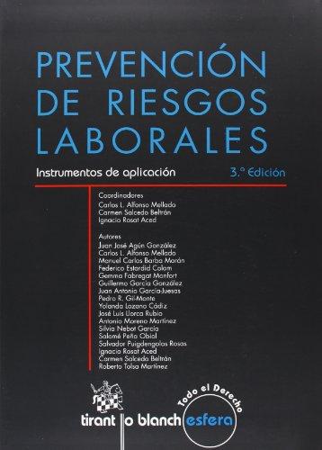 9788490331262: Prevención de riesgos laborales : instrumentos de aplicación