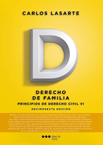 9788491232810: Principios de Derecho civil. Tomo VI: Derecho de familia: 6 (Manuales universitarios)