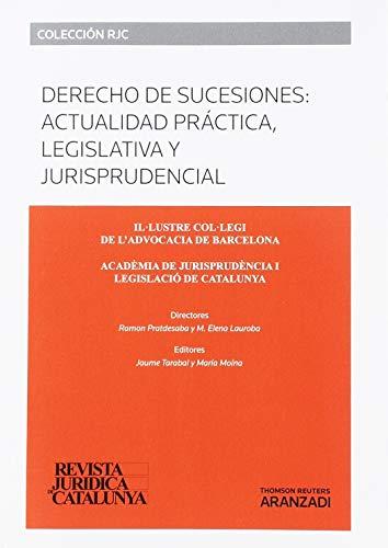 9788491353492: Derecho De Sucesiones Actualidad Practica Legislativa Y Jurisprudencia