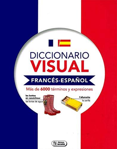 9788491783176: DICCIONARIOS VISUALES: Diccionario visual. Francés y español: 1