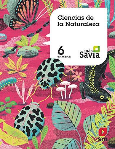 9788491822899: Ciencias de la naturaleza. 6 Primaria. Más Savia. MEC: Ciencias naturales 6 Primaria