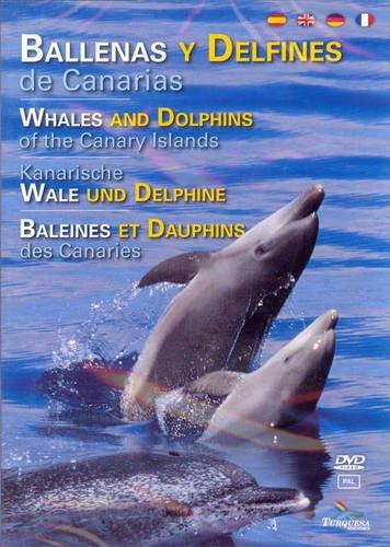 9788492648429: Ballenas y Delfines de Canarias: Whales and Dolphins of the Canary Islands